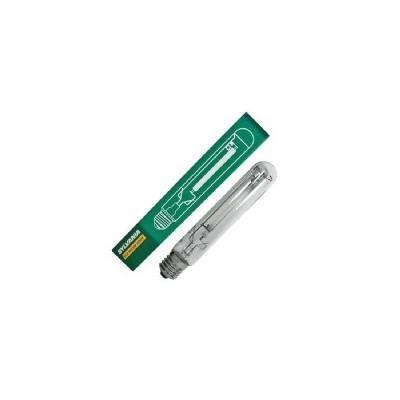 Lampada Coltivazione SHP-TS 600W Sylvania - Fioritura