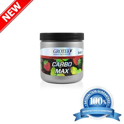 CARBO MAX 100G