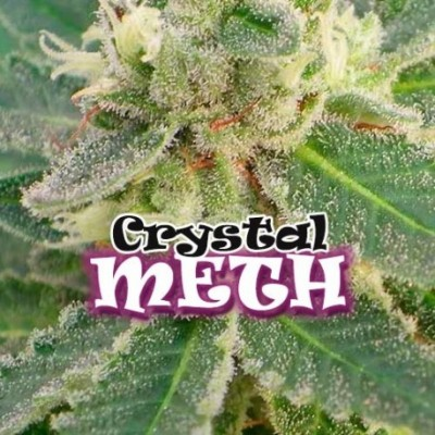 CRYSTAL M.E.T.H.