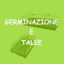 GERMINAZIONE E TALEE